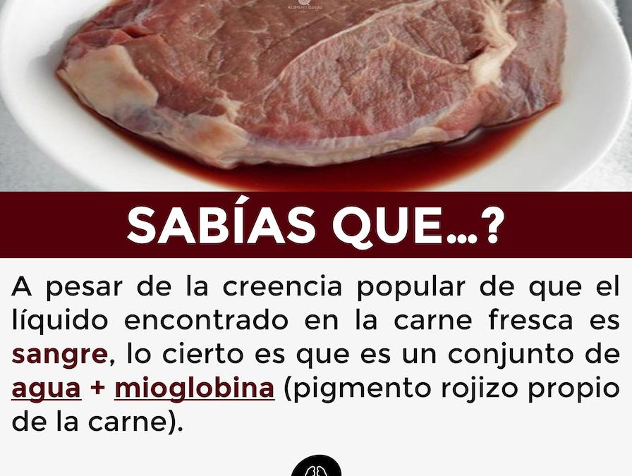El líquido de la carne fresca no es sangre, es agua teñida