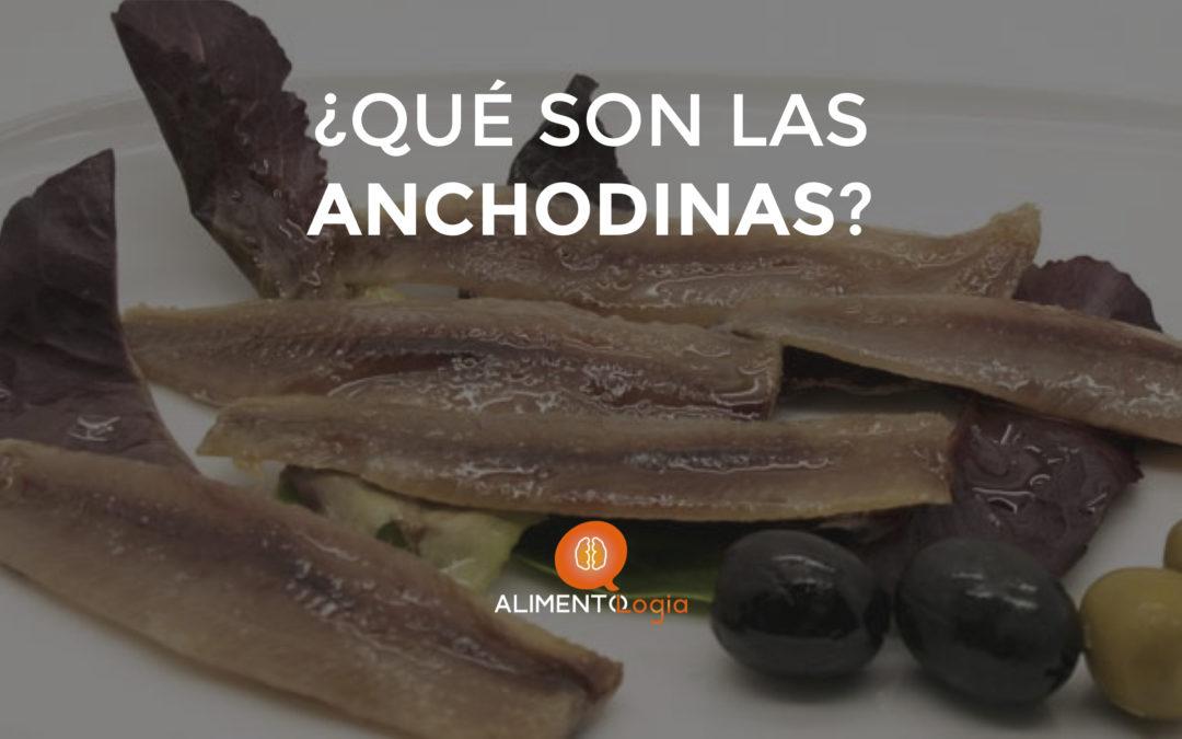 ¿Qué son las Anchodinas?