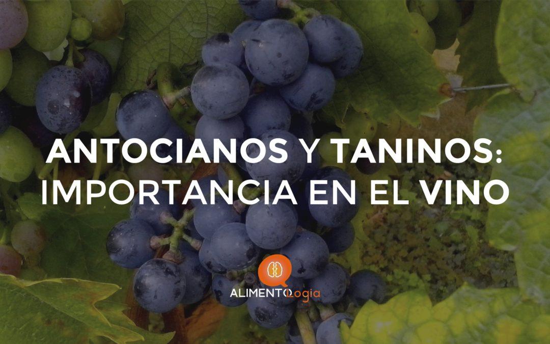 ¿Qué importancia tienen los Antocianos y Taninos en el Vino?